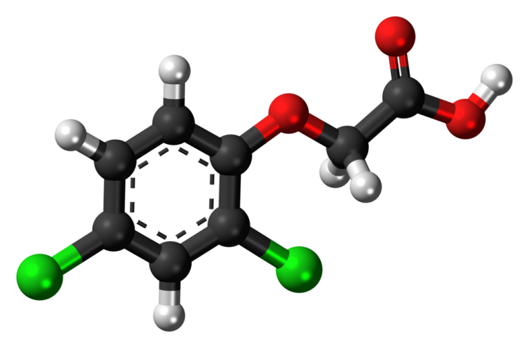1024px-2,4-Dichlorophenoxyacetic-acid-3D-balls-2